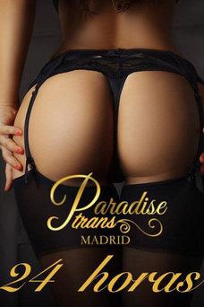 Paradise Trans Madrid, Agencia en Madrid